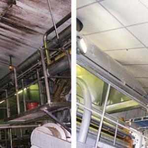 voor en na renovatie schimmel aardappelbloemfabriek